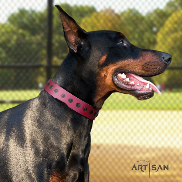 Doberman leather dog collar with decorations for your beautiful four-legged friend