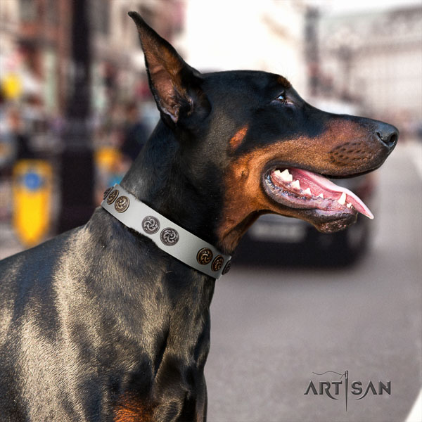 Doberman full grain leather dog collar with adornments for your attractive pet