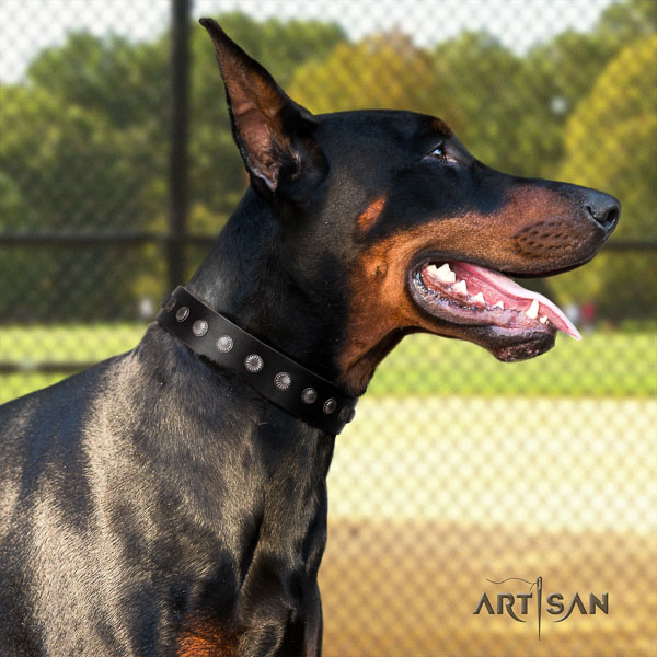 Doberman leather dog collar with decorations for your impressive canine