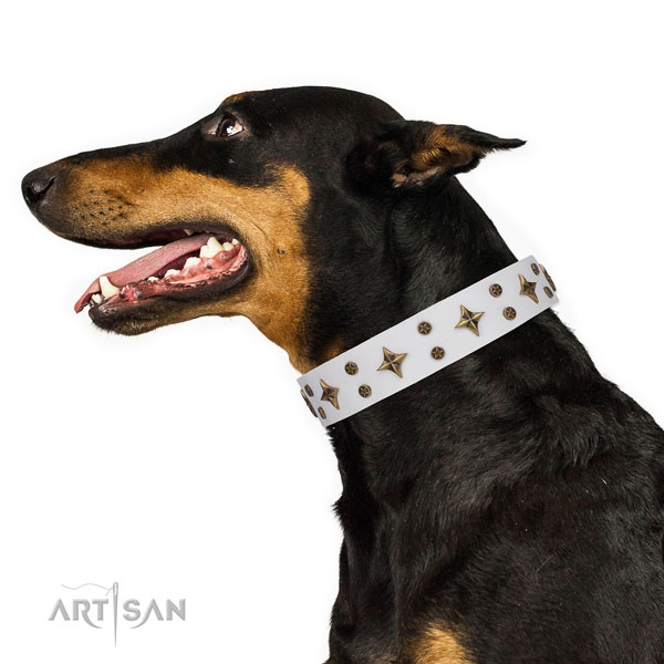 Doberman unique natural genuine leather dog collar for everyday walking