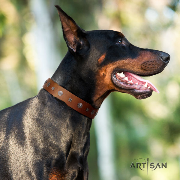 Doberman full grain natural leather dog collar with embellishments for your stylish pet