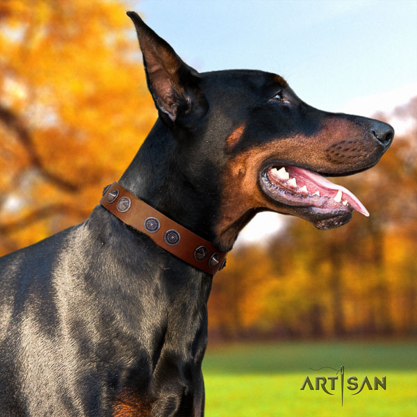 Doberman genuine leather dog collar with studs for your stylish pet