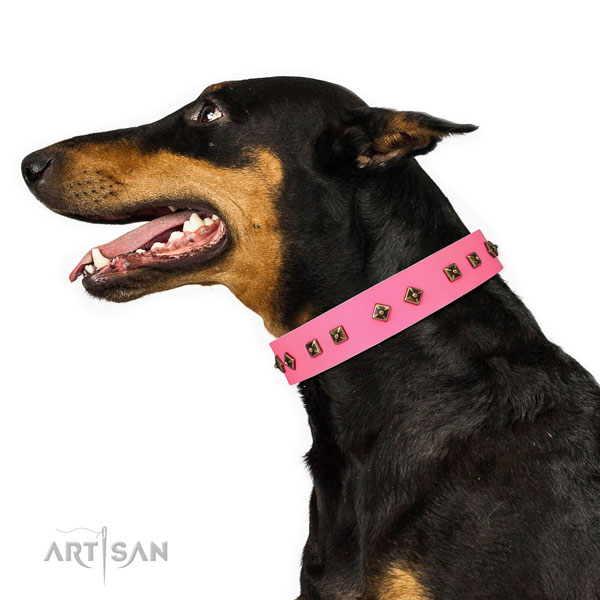Doberman fashionable full grain leather dog collar for handy use