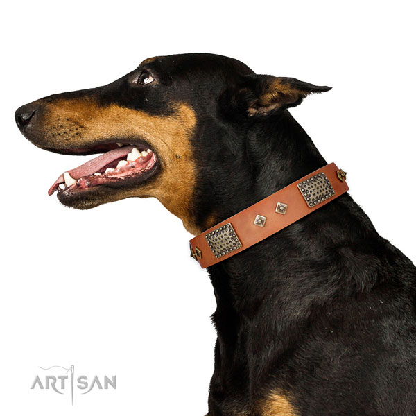 Doberman top quality full grain genuine leather dog collar for walking