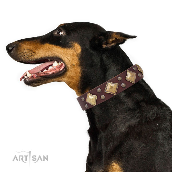 Doberman handcrafted full grain genuine leather dog collar for daily use