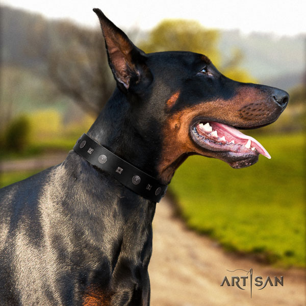 Doberman full grain natural leather dog collar with adornments for your attractive dog