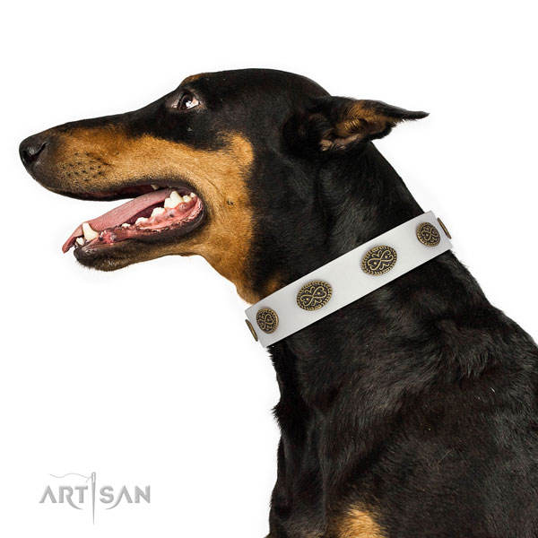 Doberman decorated genuine leather dog collar for comfortable wearing