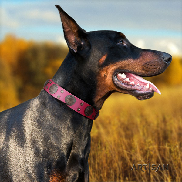 Doberman genuine leather dog collar with adornments for your beautiful canine