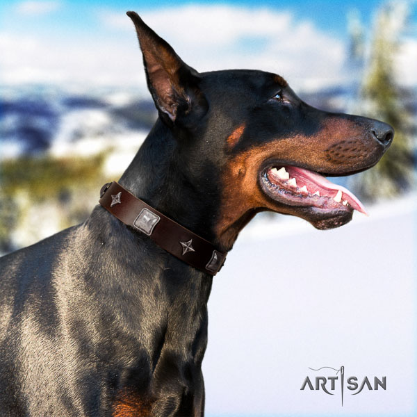 Doberman full grain genuine leather dog collar with embellishments for your impressive pet