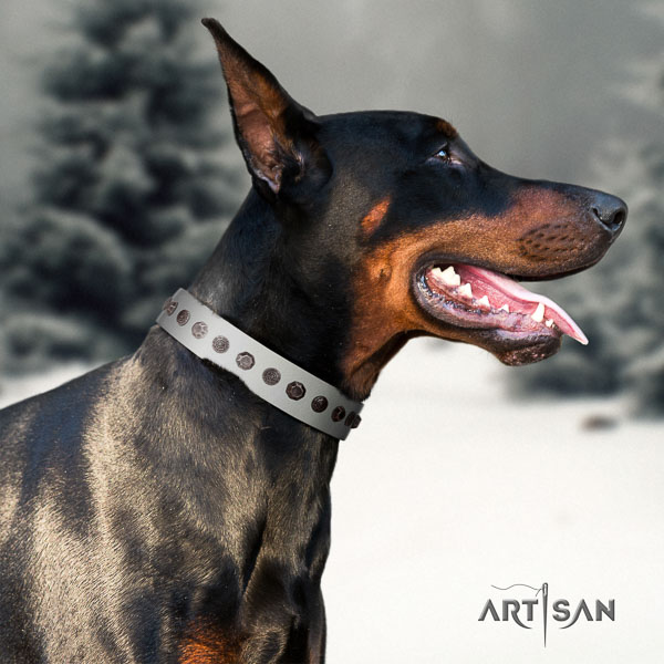 Doberman leather dog collar with studs for your beautiful canine