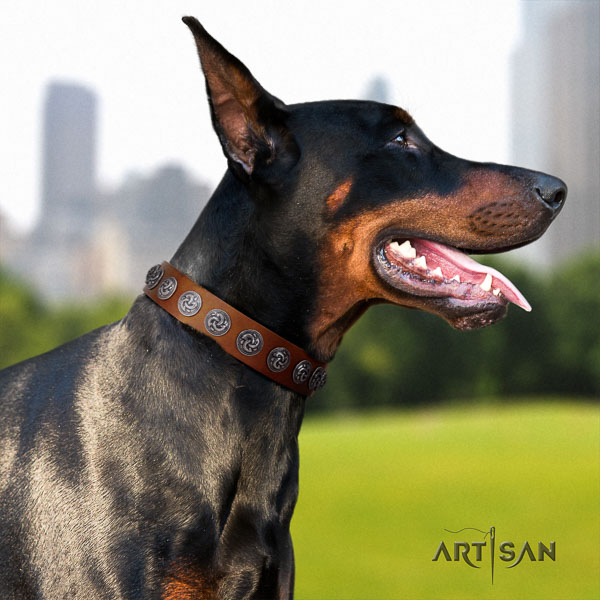 Doberman full grain leather dog collar with studs for your impressive pet