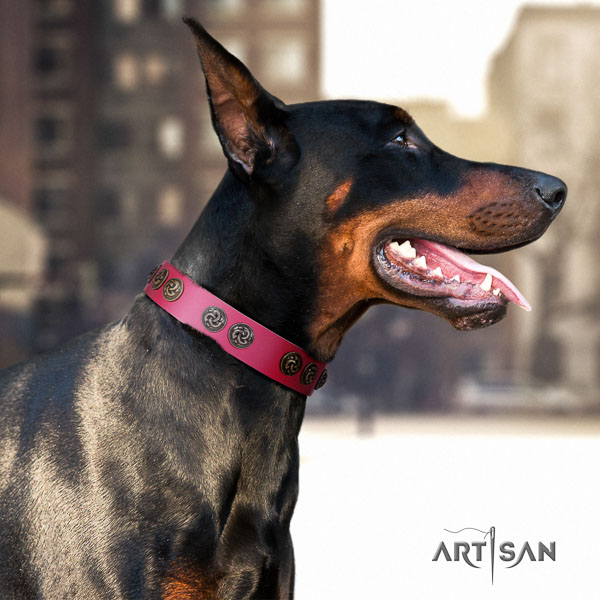 Doberman leather dog collar with decorations for your attractive canine