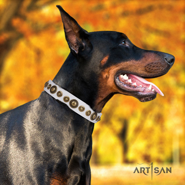 Doberman full grain natural leather dog collar with embellishments for your handsome canine