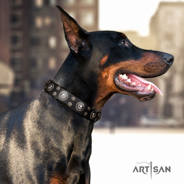 Doberman leather dog collar with adornments for your lovely canine