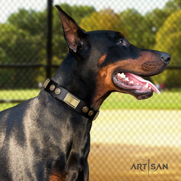 Doberman exquisite full grain natural leather collar with embellishments for your canine