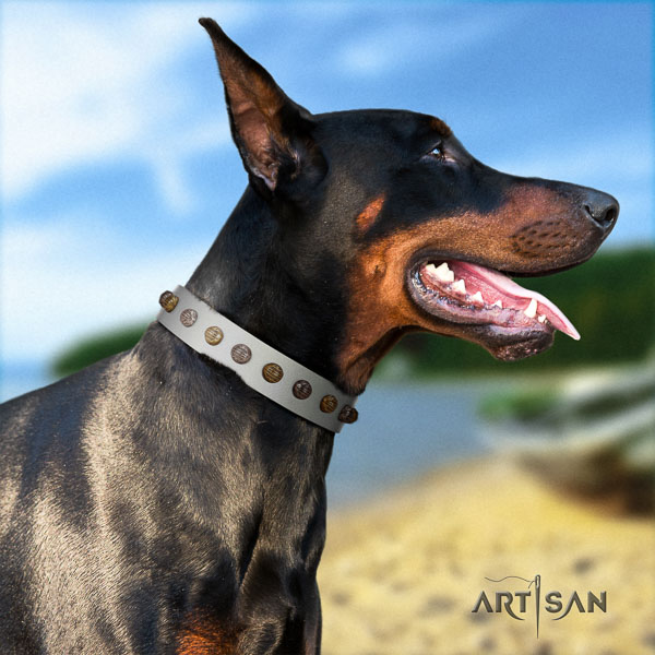 Doberman leather dog collar with adornments for your handsome canine