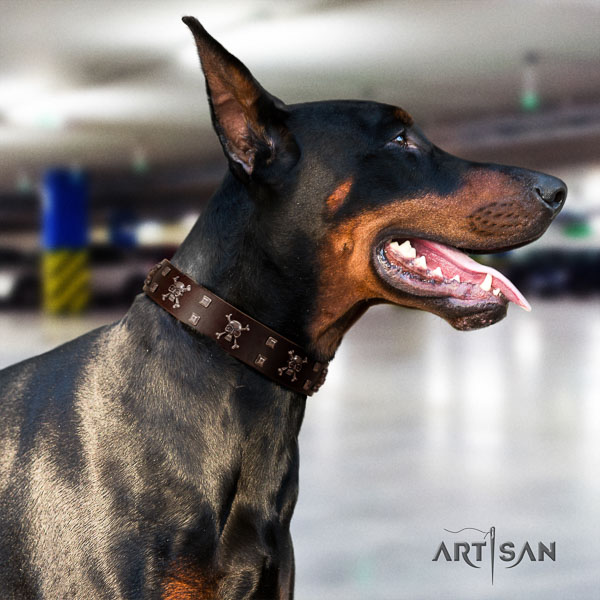 Doberman full grain natural leather dog collar with embellishments for your beautiful dog