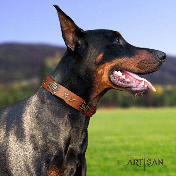 Doberman full grain genuine leather dog collar with embellishments for your beautiful four-legged friend