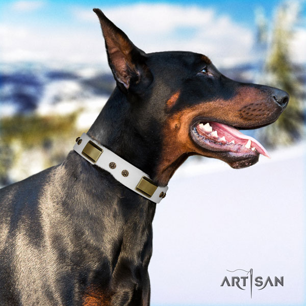 Doberman remarkable natural genuine leather collar with studs for your doggie