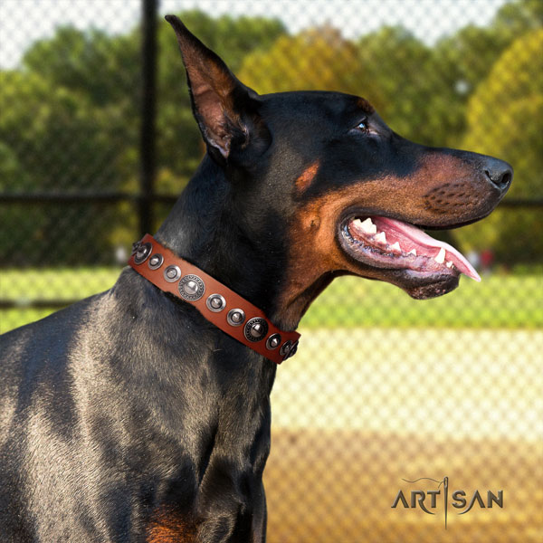Doberman natural genuine leather dog collar with decorations for your beautiful dog