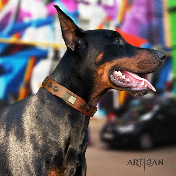 Doberman trendy full grain natural leather collar with embellishments for your dog