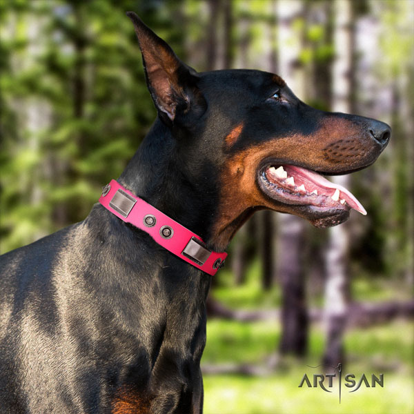 Doberman stunning genuine leather collar with decorations for your pet