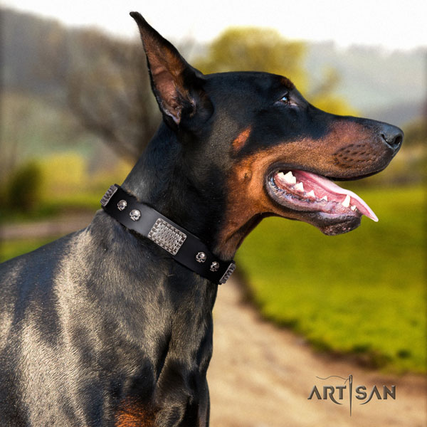 Doberman incredible full grain genuine leather collar with adornments for your pet