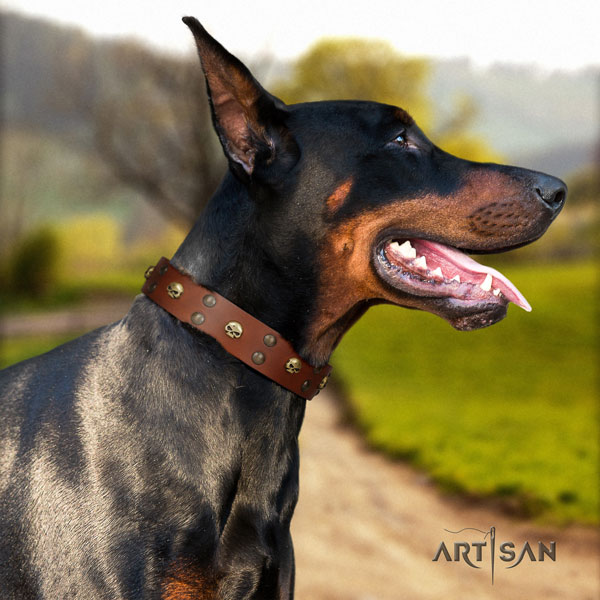 Doberman genuine leather dog collar with studs for your beautiful dog