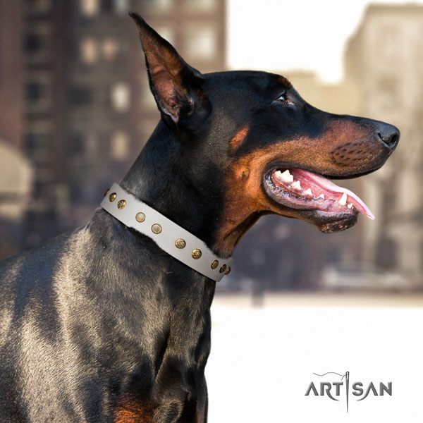 Doberman leather dog collar with adornments for your handsome dog