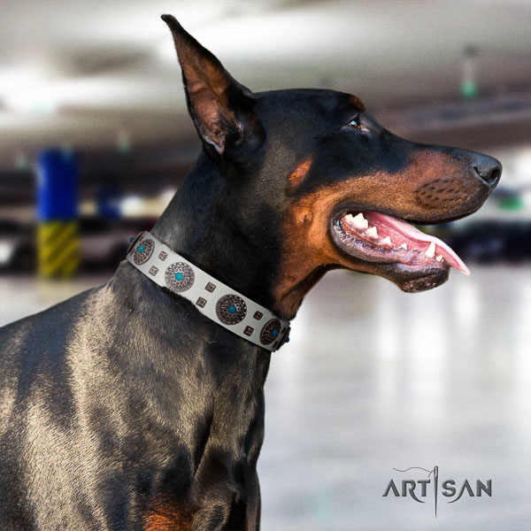 Doberman full grain genuine leather dog collar with adornments for your beautiful pet
