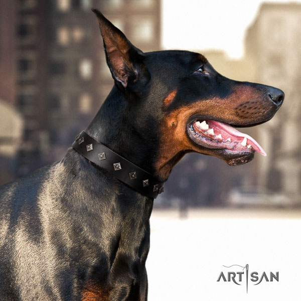 Doberman full grain leather dog collar with decorations for your stylish canine