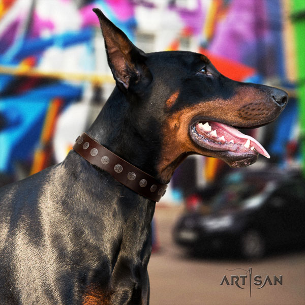 Doberman full grain natural leather dog collar with decorations for your beautiful dog