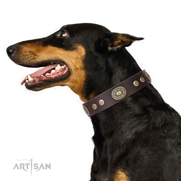 Doberman easy to adjust full grain genuine leather dog collar for comfy wearing