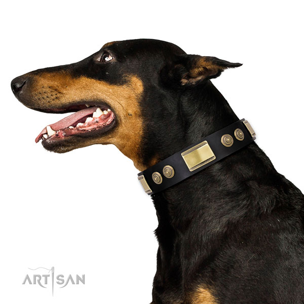 Doberman convenient full grain leather dog collar for walking