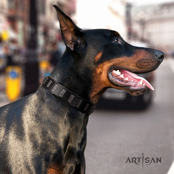 Doberman full grain leather dog collar with adornments for your impressive four-legged friend