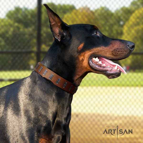 Doberman natural genuine leather dog collar with embellishments for your handsome doggie