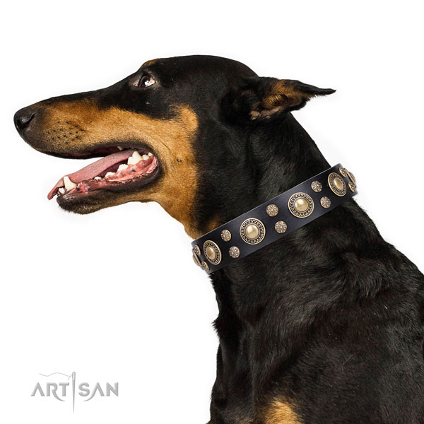 Doberman trendy genuine leather dog collar for handy use