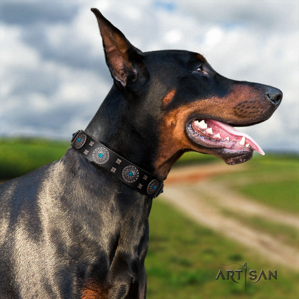 Doberman leather dog collar with decorations for your beautiful doggie