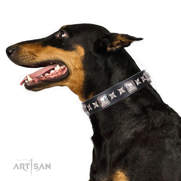Doberman impressive full grain leather dog collar for basic training