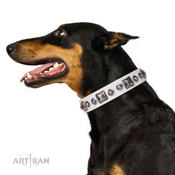 Doberman adorned natural genuine leather dog collar for walking