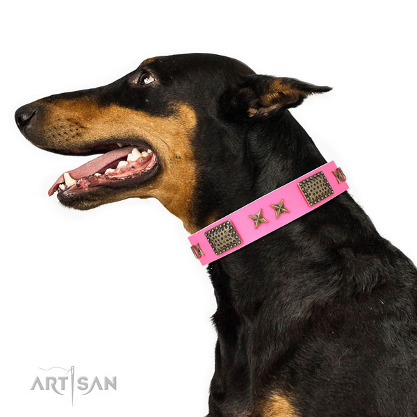 Doberman unique full grain genuine leather dog collar for everyday walking