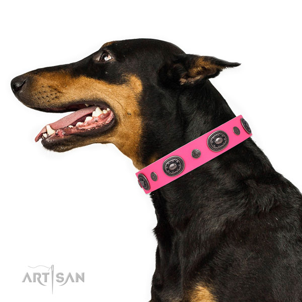 Doberman trendy natural genuine leather dog collar for handy use