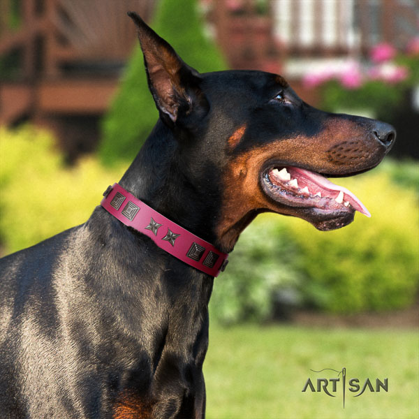 Doberman genuine leather dog collar with embellishments for your attractive canine