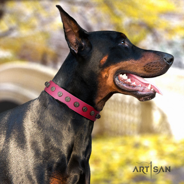Doberman leather dog collar with adornments for your beautiful dog