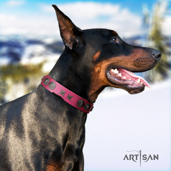 Doberman full grain genuine leather dog collar with embellishments for your beautiful doggie