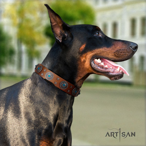 Doberman full grain leather dog collar with embellishments for your stylish pet