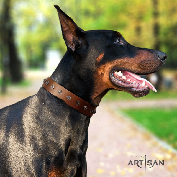 Doberman full grain natural leather dog collar with decorations for your beautiful pet