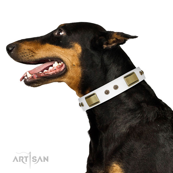 Doberman impressive genuine leather dog collar for fancy walking