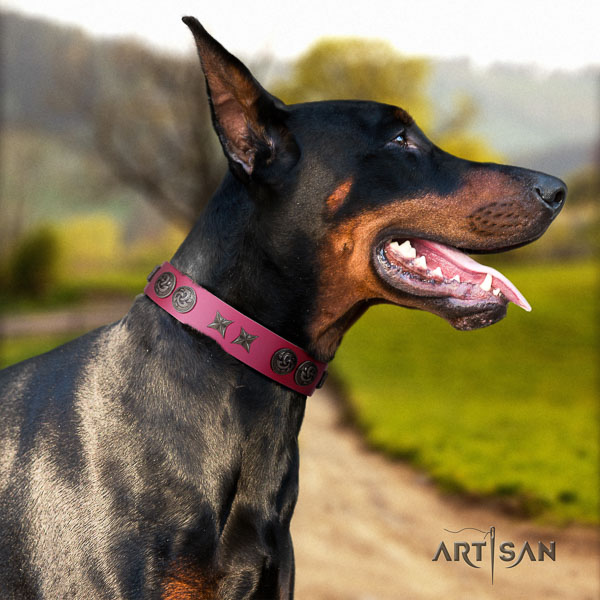 Doberman genuine leather dog collar with adornments for your lovely dog