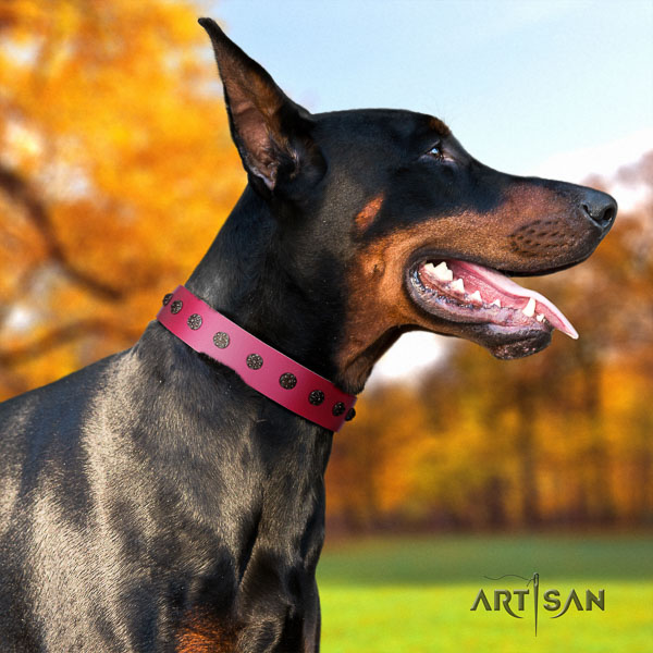 Doberman leather dog collar with embellishments for your attractive pet